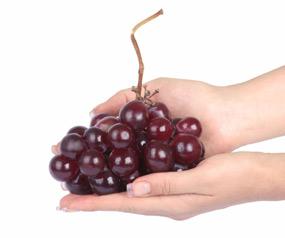 יופי של פירות